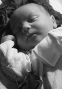 Midwives – Home Birth Directory - Have a Chicago-area home birth